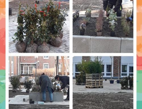 Bepflanzungs-Aktion in der Seniorenresidenz Weißensee!