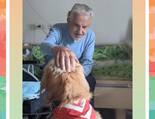 Neuer Therapiehund im Haus Pankow